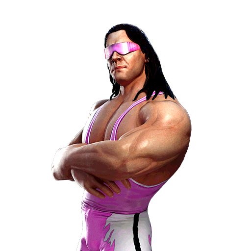 Bret Hart 'The Excellence of Execution'