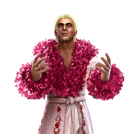 Ric Flair 'The Nature Boy'